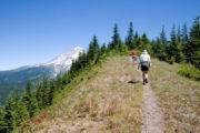 Excursionistas en el Bosque Nacional Mount Hood