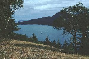 Lago en bosque templado