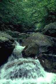 Río Saluda, Estados Unidos