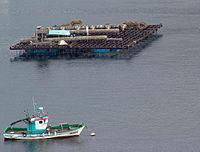 Batea y barco en Vigo, Galicia
