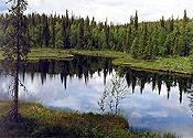 Parque Nacional Paanajärvi (Rusia)