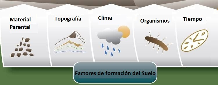 factores de formacion del suelo